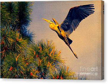 Close To The Pines Canvas Print