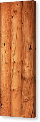 Close-up Of Log House, Oregon, Usa Canvas Print