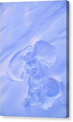 Close Up Of Snow Angel At Sunset With Canvas Print