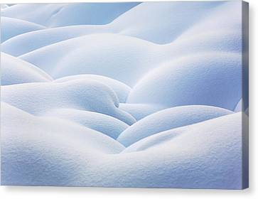 Close Up Of Snow Covered Round Canvas Print by Michael Interisano