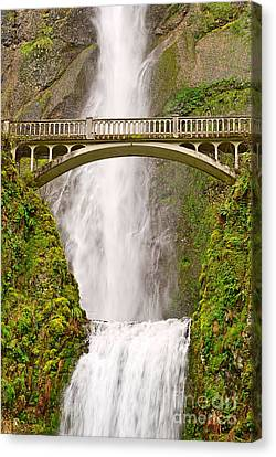 Green Lichen Canvas Print - Close Up View Of Multnomah Falls In The Columbia River Gorge Of Oregon by Jamie Pham