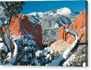 Clothed In White At The Garden Canvas Print