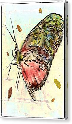 Cloud Butterfly Canvas Print by Jill Balsam