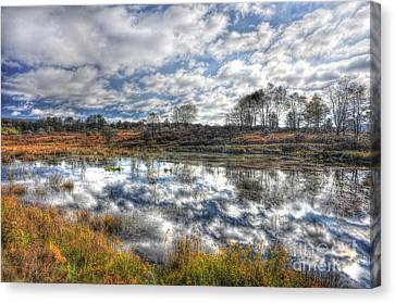 Cloud Reflections In Beaver Pond Canaan Valley Canvas Print by Dan Friend