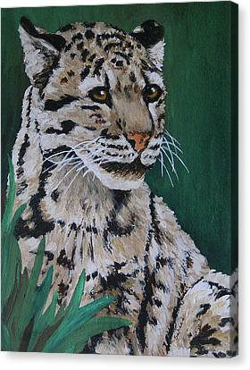 Clouded Leopard Canvas Print by Margaret Saheed