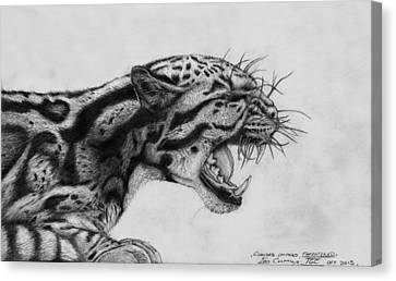 Clouded Leopard Theatened. Canvas Print by Ian Cuming