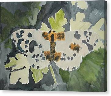 Clouded Magpie Watercolor On Paper Canvas Print by William Sahir House