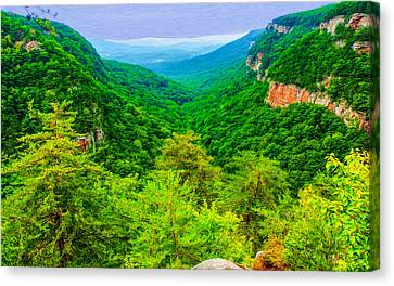 Cloudland Canyon Expanse Canvas Print by John M Bailey