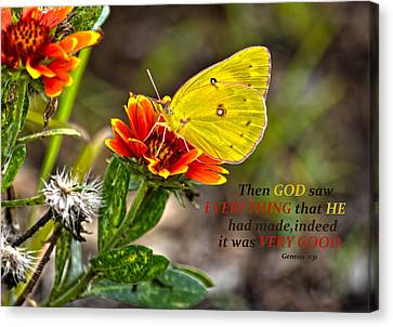 Cloudless Sulphur Butterfly And Scripture Canvas Print by Sandi OReilly