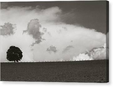 Clouds Canvas Print by Amarildo Correa