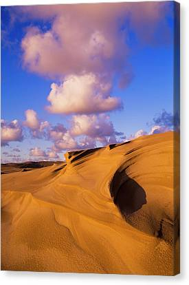 Clouds And Dunes Are Shape-shifters Canvas Print by Robert L. Potts