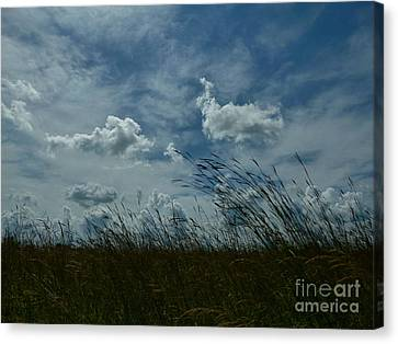 Clouds And Grass Canvas Print by Tim Good