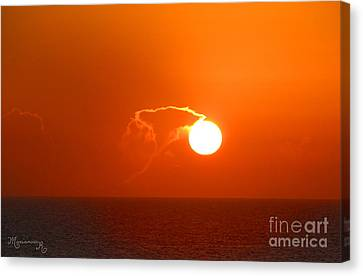 Lassoing The Setting Sun Canvas Print