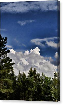 Clouds Like Mountains Behind The Pines Canvas Print by Paulette B Wright