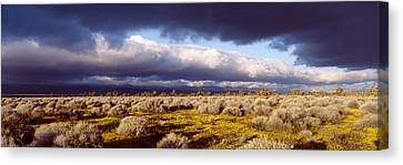 Clouds, Mojave Desert, California, Usa Canvas Print by Panoramic Images