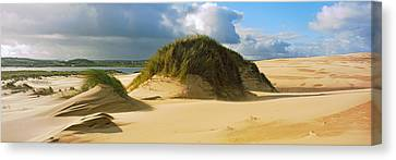 Clouds Over Sand Dunes, Sands Canvas Print by Panoramic Images
