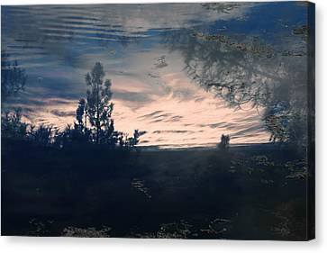 Cloudy Lake Canvas Print by Nicole Swanger