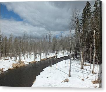 Canvas Print featuring the photograph Cloudy Spring Day by Gene Cyr