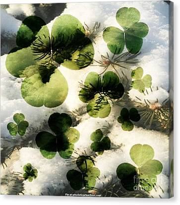 Clovers After The Snow Canvas Print by PainterArtist FIN