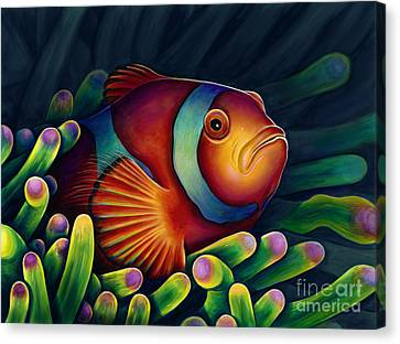 Clown Fish Canvas Print by Scott Spillman