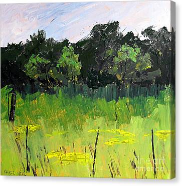 Clusters Of Black-eyed Susans Canvas Print by Charlie Spear