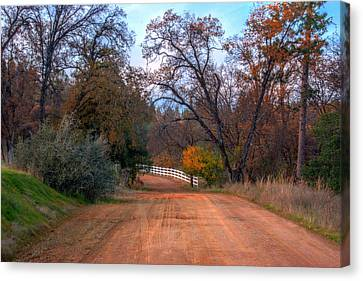 Canvas Print featuring the photograph Clydesdale Road Too by William Havle