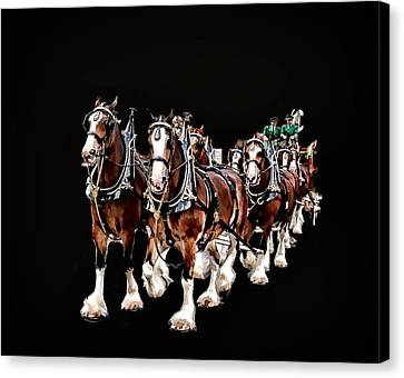 Clydesdales Hitch Canvas Print by Constantine Gregory
