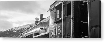 Canvas Print - Cn 6015 by R J Ruppenthal