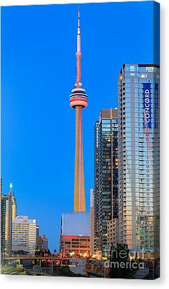 Cn Tower By Night Canvas Print by Inge Johnsson