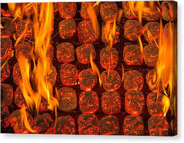 Grill Canvas Print - Coal Fire by Steve Gadomski