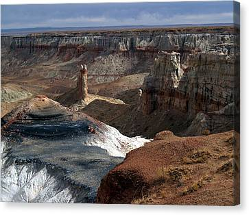 Coal Mine Mesa 09 Canvas Print