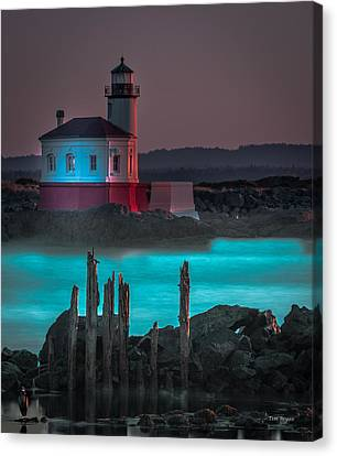Coaquille Lighthouse Canvas Print by Tim Bryan