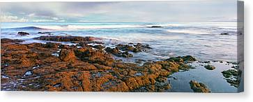 Roca Canvas Print - Coast At Sunset, Las Rocas Beach, Baja by Panoramic Images