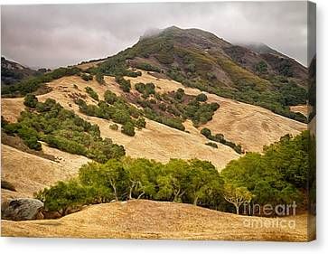 Coast Hills Canvas Print