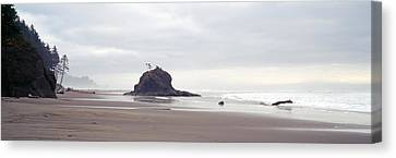 Coast La Push Olympic National Park Wa Canvas Print by Panoramic Images