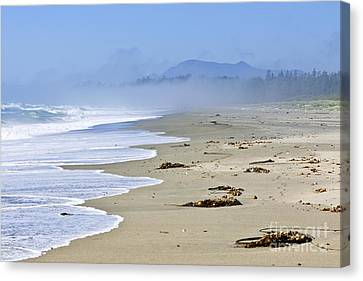 Coast Of Pacific Ocean In Canada Canvas Print by Elena Elisseeva