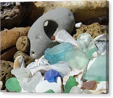 Coastal Beach Art Prints Blue Seaglass Fossils Shells Canvas Print by Baslee Troutman
