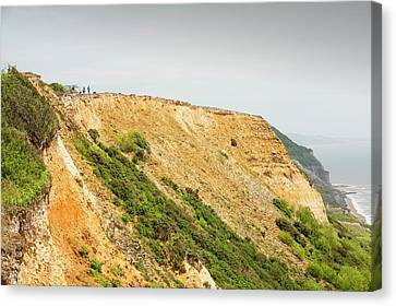 Ledge Canvas Print - Coastal Cliff On The Jurassic Coast by Ashley Cooper