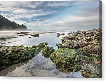 Coastal Colors Canvas Print by Jon Glaser
