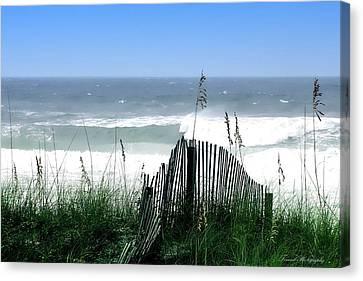 Coastal Desire Canvas Print by Debra Forand