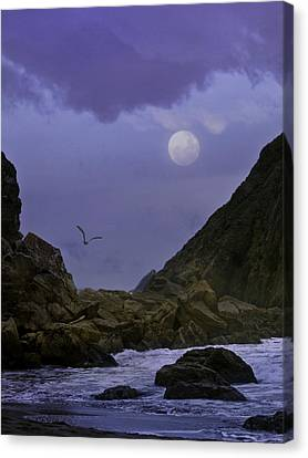 Coastal Moods Moonglo Canvas Print by Diane Schuster
