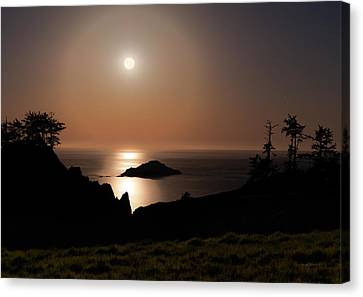 Coastal Moon Dog Canvas Print