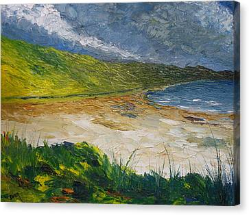Coastal Road To Barleycove Canvas Print by Conor Murphy