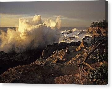 Coastal Storm Wave Canvas Print