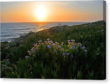 Coastal Sunset Canvas Print by Lynn Bauer