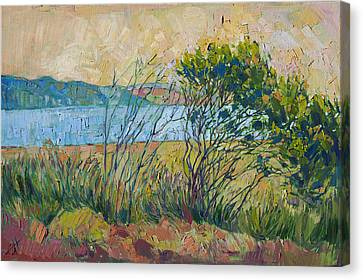 Canvas Print featuring the painting Coastal View by Erin Hanson