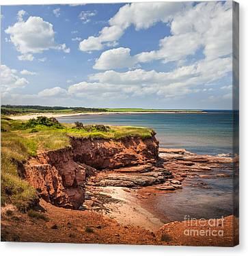Coastline At East Point  Canvas Print by Elena Elisseeva