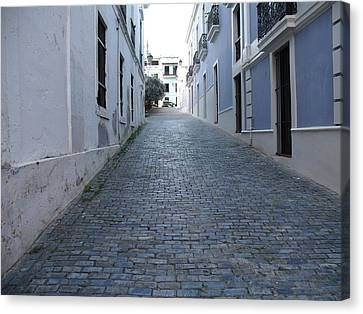 Canvas Print featuring the photograph Cobble Street by David S Reynolds