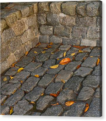 Cobblestones Canvas Print by Art Block Collections