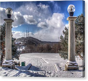 Cobbs Hill Park In Winter Canvas Print by Tim Buisman